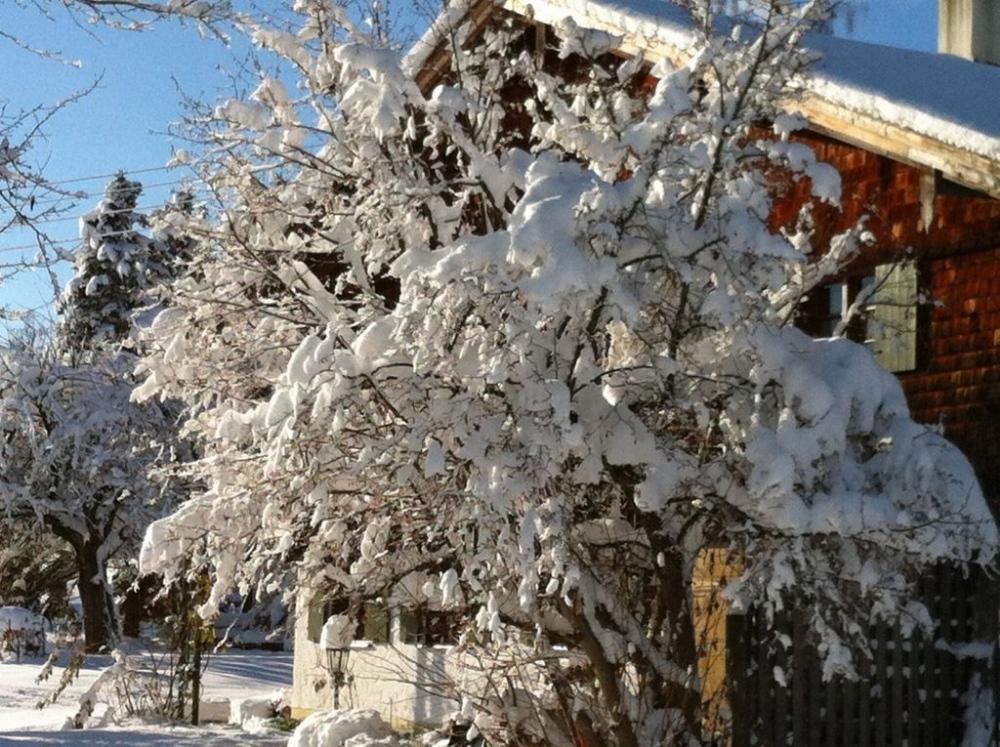 winter-20