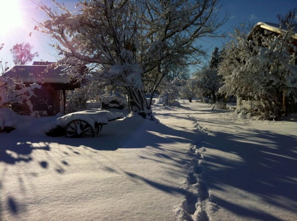 winter-22