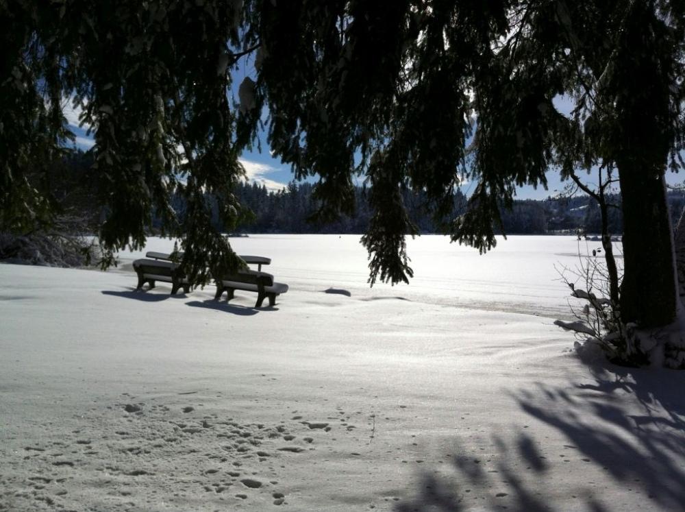 winter-notzen-12