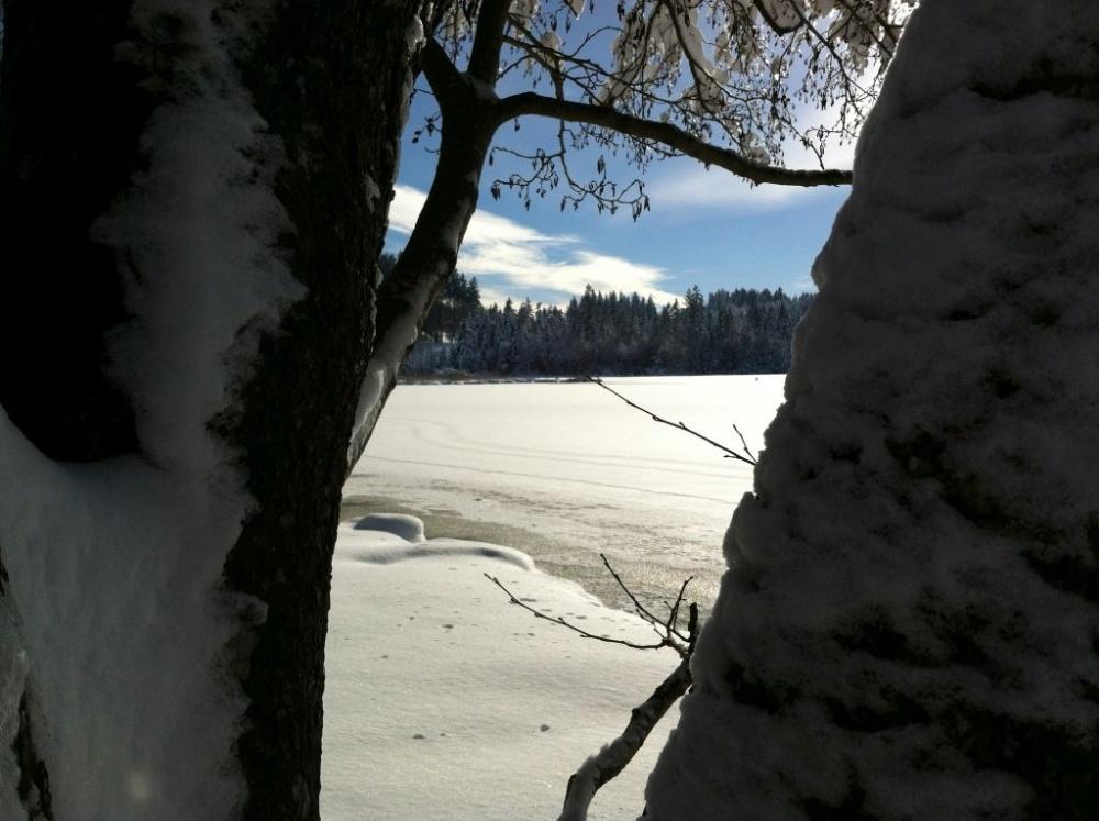 winter-notzen-9