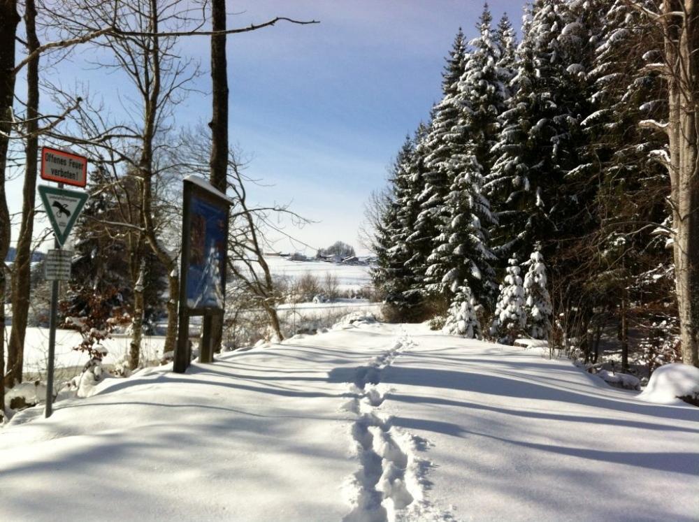 winter-notzen